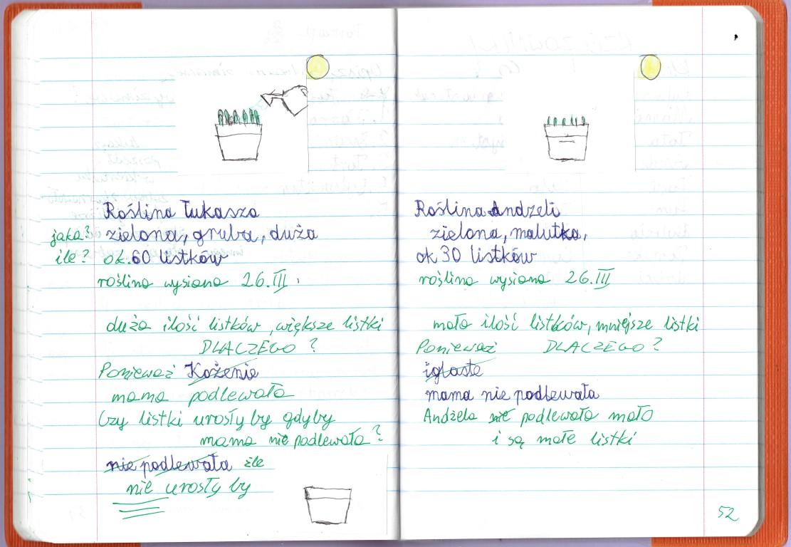 01.IV Owies wielkanocny -omawianie wysianych roślinek