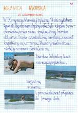 47) Krynica Morska - 24 czerwiec-8 lipiec