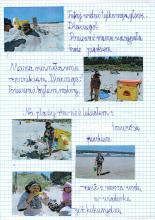 48) Krynica Morska - 24 czerwiec-8 lipiec