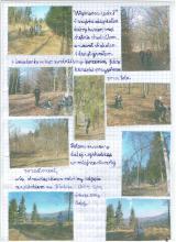11) DPG V/XXXIII - Szeroka Góra - Góry Bardzkie - 21 marzec