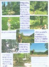 77) Borowa - Góry Wałbrzyskie - 7 czerwiec