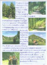 79) Borowa - Góry Wałbrzyskie - 7 czerwiec
