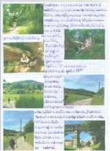 80) Borowa - Góry Wałbrzyskie - 7 czerwiec