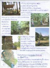 96) KGP IX-Waligóra-Góry Kamienne - 25 sierpień