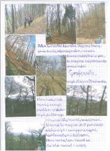 155) Opolnica-Miejsce Hrabiowskie - 11 listopad