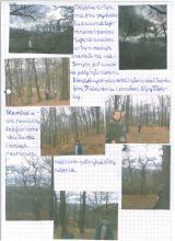 156) Opolnica-Miejsce Hrabiowskie - 11 listopad