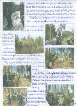12) Ptasznik-Góry Złote - 8 luty